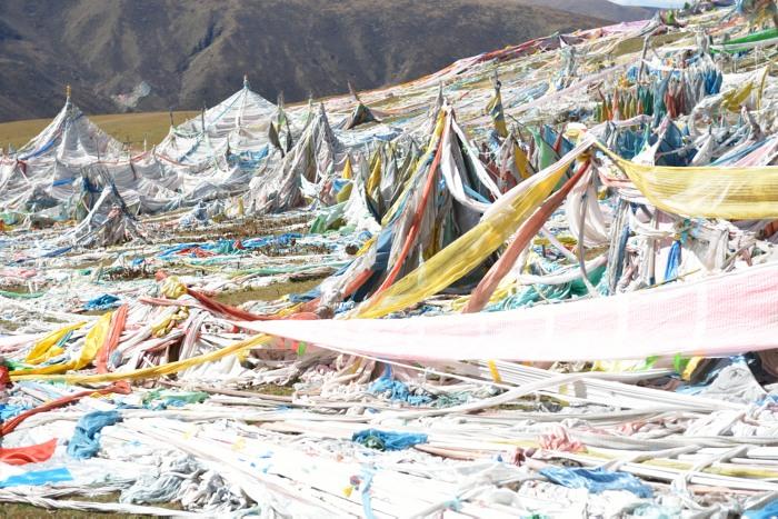 チベットより帰国