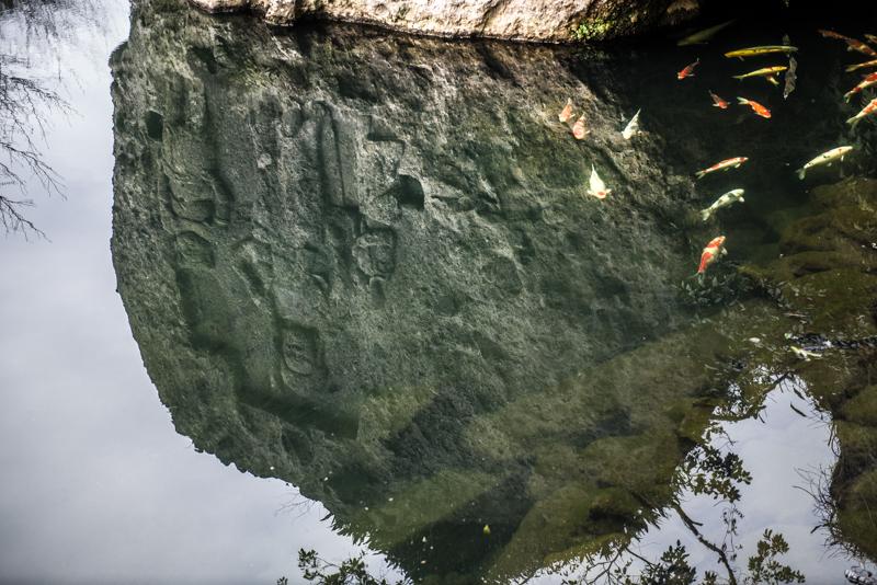 石と魚の息遣い