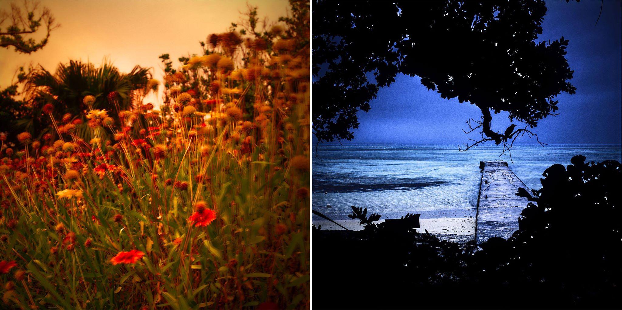 Colors 沖縄の光と影