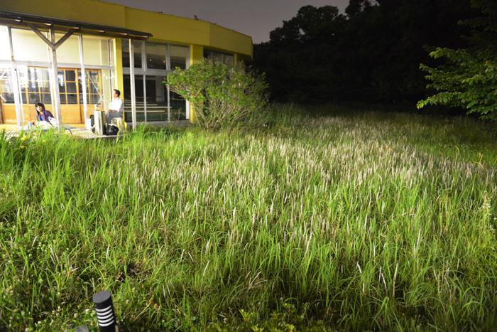 weathereport 2015 0608 ヒマラヤへの絵葉書、宇宙刑事、東京園ノスタルジー