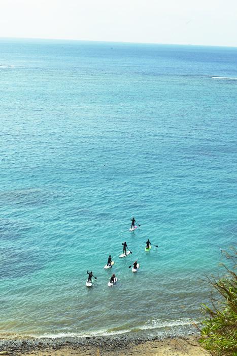 やんばる訪問記2 美ら海とヒルギ林と