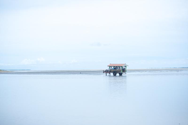 左手の青、右手の緑 ガジュマルのある風景02、西表島