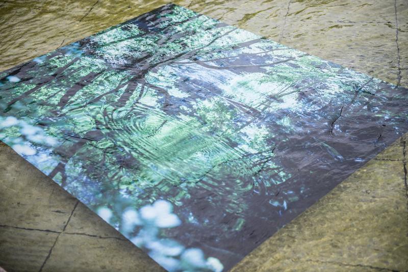T3PHOTO FESTIVAL TOKYO 上野公園、新緑放浪